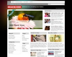 Antisnews Magazine Theme for WordPress