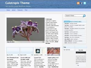 Calotropis Magazine or Traditional Style WordPress Theme