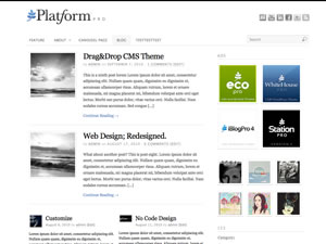 Platform WordPress Theme