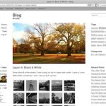 Emptiness Minimalist Theme for WordPress