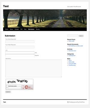 WordPress Submission Plugin