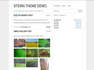 Steira Theme for WordPress
