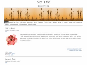 ZenLite Theme for WordPress