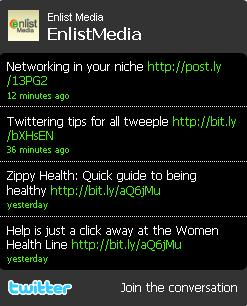 Twitter Profil Widget