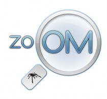 Zoom Widget for WordPress