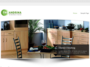 Andrina Lite Theme for WordPress
