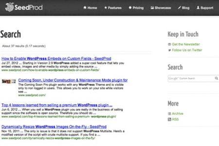 WordPress Google Search Plugin