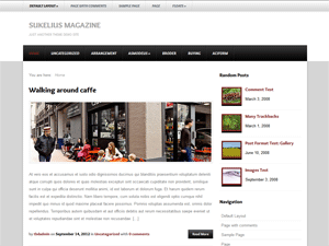 Sukelius Magazine Theme