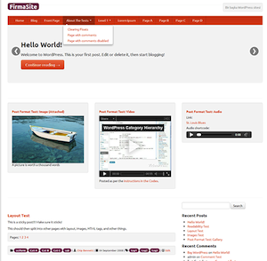 FirmaSite Theme for WordPress