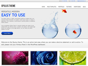WP Opulus Theme