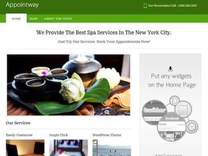 Appointway Theme for WordPress