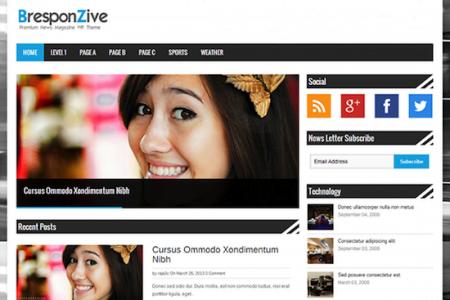 BresponZive Magazine Theme for WordPress