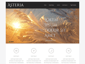 Asteria Lite Theme