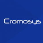 Dedicated WordPress Web Developer at Cromosys