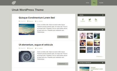Unuk Responsive WordPress Theme