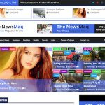 The NewsMag WordPress Theme